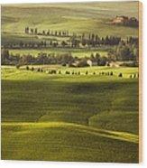 Tuscan Fields Wood Print by Andrew Soundarajan