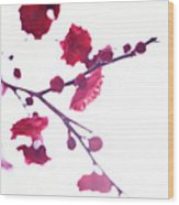 Ume Blossom Under The Sun Wood Print by Moaan