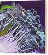 Undersea World Wood Print by Robin Hewitt