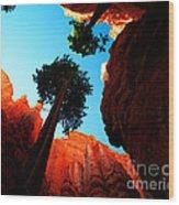 Utah - Navajo Loop 4 Wood Print by Terry Elniski