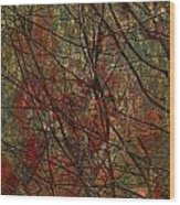 Vines And Twines  Wood Print by Jerry Cordeiro