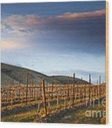 Vineyard Storm Wood Print by Mike  Dawson
