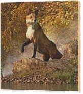 Vixen By The River Wood Print by Daniel Eskridge