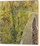 W Road In Autumn Wood Print by Tom and Pat Cory