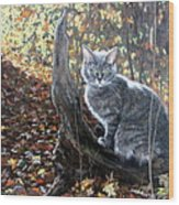 Waiting In The Woods Wood Print by Sandra Chase