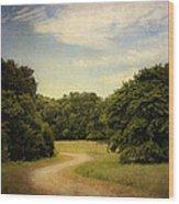 Wandering Path II Wood Print by Tamyra Ayles