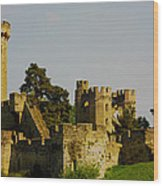 Warwick Castle Wood Print by Ian Flear