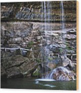 Water Flow Over A Rock At Hamilton Pool Wood Print by Lisa  Spencer