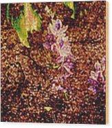 Water Flowers Vietnam Wood Print by Skip Nall