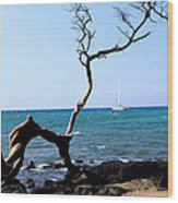 Water Sports In Hawaii Wood Print by Karen Nicholson