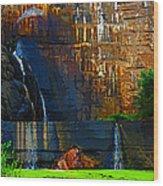 Watson Lake Waterfall Wood Print by Julie Lueders