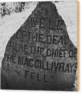 well of the dead and clan macgillivray memorial stone on Culloden moor battlefield site highlands sc Wood Print by Joe Fox