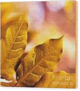 When Leaves Turn Gold Wood Print by Artist and Photographer Laura Wrede
