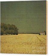 White Barn Wood Print by Paul Grand