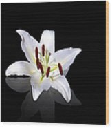 White Lily Wood Print by Jane Rix