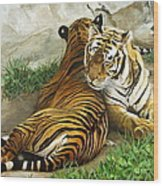 Wild Content Wood Print by Sandra Chase