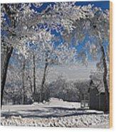 Winter Morning Wood Print by Lois Bryan