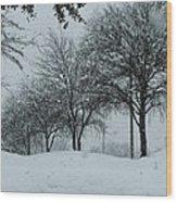 Winterlude Wood Print by Shawn Hughes