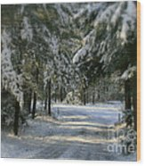 Winter's Tranquility Wood Print by Debra Straub