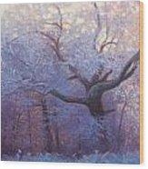 Wonderland Wood Print by Jonathan Howe