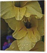 Yellow Trio Wood Print by Susan Herber