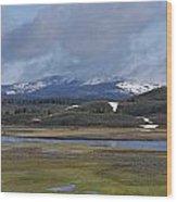 Yellowstone Vista 10 Wood Print by Charles Warren