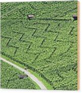 Zig-zag In Vineyards Wood Print by Ursula Sander