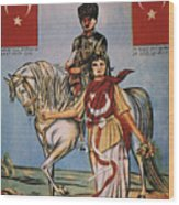 Republic Of Turkey: Poster Wood Print by Granger