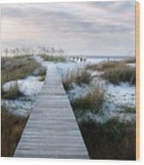 Across The Dunes Wood Print by Julie Dant