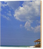 Blue Mountain Beach Wood Print by Thomas R Fletcher