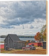 Cranberry Farming Wood Print by Gina Cormier