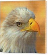 Eagle 10 Wood Print by Marty Koch