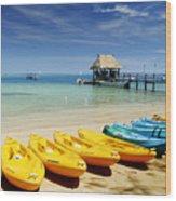 Fiji, Malolo Island Wood Print by Himani - Printscapes