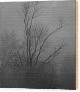Nebelbild 13 - Fog Image 13 Wood Print by Mimulux patricia no
