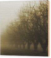 Orchard In Fog Wood Print by Rebecca Cozart