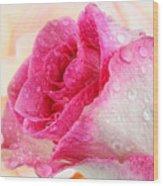 Pink Wood Print by Mark Johnson
