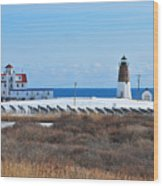 Point Judith Light Wood Print by Catherine Reusch  Daley