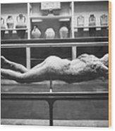 Pompeii: Plaster Cast Wood Print by Granger