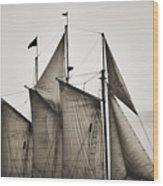 Schooner Pride Tall Ship Charleston Sc Wood Print by Dustin K Ryan