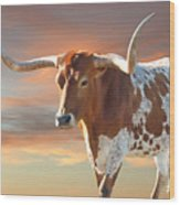 Texas Icon Wood Print by Robert Anschutz