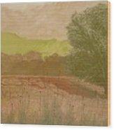 The Fog Bank Wood Print by Harvey Rogosin
