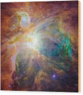The Orion Nebula Wood Print by Stocktrek Images