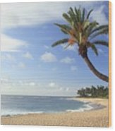 Tropical Beach Wood Print by Michael Szoenyi