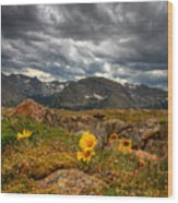 12000 Foot Flower Wood Print by Peter Tellone