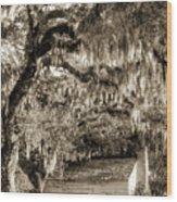 19th Century Slave House Wood Print by Dustin K Ryan