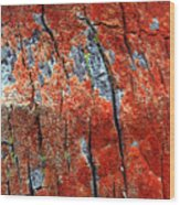 Tree Bark Wood Print by John Foxx