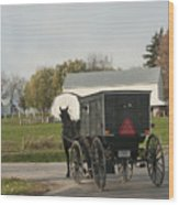 Amish Buggy Wood Print by David Arment