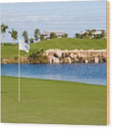 Florida Gold Coast Resort Golf Course Wood Print by ELITE IMAGE photography By Chad McDermott