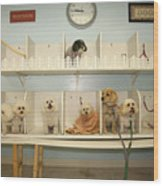 A Day At The Doggie Day Spa Wood Print by Michael Ledray