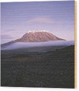 A View Of Snow-capped Mount Kilimanjaro Wood Print by David Pluth